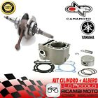 Turbine Overhaul Kit Engine Thermal Unit Cylinder + Shaft Malaguti Password 250