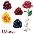 24K Gold Rose Dipped Flower Real Long Stem St Valentines Day Love Gift For Women