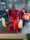 TY BEANIE BABY COLOSSO MAMMOUTH