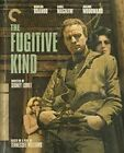 The Fugitive Kind The Criterion Collection Blu Ray Disc 2020 Marlon Brando