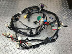 Hyosung GT250 Comet  Wiring Harness  2010 onwards EFI models Great Condition
