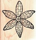 Outlines CLEMATIS LG Wood Mounted Rubber Stamps Flowers Nature