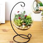 Planter Bonsai Flower Pot Wooden Frame Glass Vase Hydroponic Plant Vases