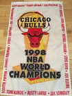 Chicago Bulls Collecting and Fan Guide 17
