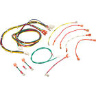 Wire Harness Raypak RP2100 R185 R405 IID