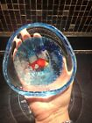 MURANO Art Glass FISH Controlled Bubbles Hand Blown Paperweight Bowl