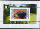 FROGS VERY INTERESTING 4 SHEETS private issue LIMITED EDITION