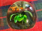 Vintage Flower With Goldfish Art Glass Round Shape Paperweight Unique