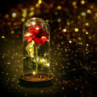 Crystal Galaxy Rose Glass Dome 20 Led Lights Gift fr Girlfriend Mom Wife US Ship