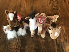 Ty Beanie Babies Hoofer Oats Derby With Tags Lot Of 3