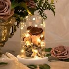 ENCHANTED ROSE WITH TEDDY BEAR IN A LIGHT UP GLASS DOME MOTHERS DAY BIRTHDAY