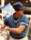 Chicago Cubs Collecting and Fan Guide 81