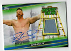 2019 Topps WWE Money in the Bank Wrestling Cards 16