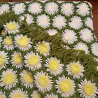 Vintage Afghan Green White Daisy Pattern Crocheted Blanket Throw 3D 50 x 70