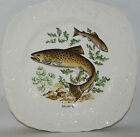 VINTAGE  ALFRED MEAKIN, ART DECO FISH SALMON DECORATED SQUARE PLATE