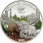 Cook 2014 Wild Boar 2 Dollars Colour Silver Coin,Proof