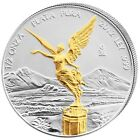 2012 1oz Ounce 999 Fine Mexican Silver Libertad 24k Gold Gilded Coin RARE