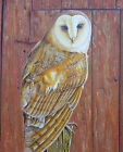 Original Painting Fine Art Portrait Bird Barn Owl Modern LW