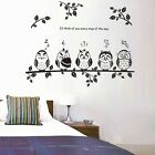 Owl Birds Removable Vinyl Kids Baby Nursery Decor Art Mural Wall Stickers Decal
