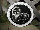 KITTEN CAT KITTY FISH BOWL COLLECTOR PLATE DROGUETT ROYAL CORNWALL