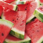 Watermelon Patch Fragrance Oil Candle Soap Making Supplies Free Shipping