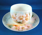 R.C. Bavaria Tea Cup Saucer Set Hand Painted Pink Flowers White Germany @3B