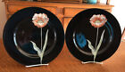2 FITZ AND FLOYD CHINA MIDNIGHT POPPY PATTERN DINNER PLATES - PALE ORANGE FLOWER