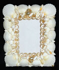 White Seashell Table Top Photo Picture Frame ~ 8