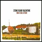 Burn Like a Field 2013 by Stone Blind Valentine - Disc Only No Case