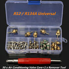 50 A C Core Valves R12 R134A Automotive Air Conditioning Assortment+Remover Tool