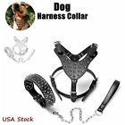 Leather Big Dog Harness Collar Leash Set Spikes Studded Pitbull Terrier Staffy
