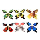 Rinhoo 6Pcs Magic Fairy Flying in the Book Butterfly Rubber Band Powered Wind
