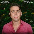 JOE PUG - WINDFALL  CD  10 TRACKS NEW+