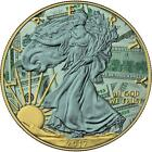 USA 2017 1 American Eagle 1oz Liberty Dollar Silver 9999 Coin