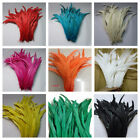 Rooster Tail Coque Feathers 6 10 Inches Many Colors Halloween Costume Craft