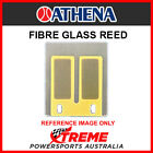 Athena 50BOY665 CAGIVA CA125 3 MOPED All Years Fibre Glass Power Reeds