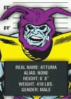 2015 Rittenhouse Avengers: Silver Age Trading Cards 17