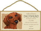 Advice from a Dachshund red Sign Plaque Dog 10 x 5 gift