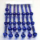 Pro-Bolt Titanium Engine Bolt Kit - Blue EHO063TIHXB Honda CBF600S 08-09