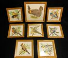 8 Hand Painted North American Bird Tiles Artist Signed by Gordon Peckham LOOK!