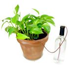 Evelots 6 Indoor Automatic Self Watering ProbesPlant System Ceramic Spikes