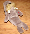 Jolly the Walrus (Ty Beanie Babies Collection) DOB 12.02.1996, P.E. Pellets