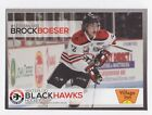 2015 Upper Deck Chicago Blackhawks Stanley Cup Champions Hockey Cards 11