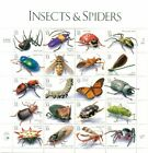 US 1998 INSECTS  SPIDERS Sheet of 20 Dif Sc 3391 33 Cents Values