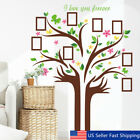 US Family Tree Butterfly Wall Sticker Picture Photo Frame Removable Room Decal