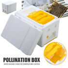 Honey Bee Hive Auto Beehive Frames Beekeeping Kit Pollination Box Equipment