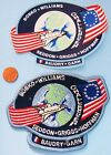 NASA PATCH  STICKER PAIR vtg Space Shuttle DISCOVERY STS 51E CANCELED MISSION