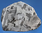 Meteorites Iron Meteorite 2958g Polished and Etched Large Complete Slice