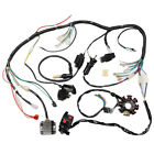 Complete Electric Wiring Harness Loom Coil CDI Stator for 250cc Dirt Bike Gokart