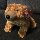Gently Used TY Beanie Baby SEQUOIA the Bear DOB July 17, 2001 L@@k!!!
